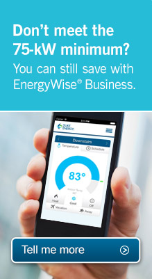 EnergyWise Business.