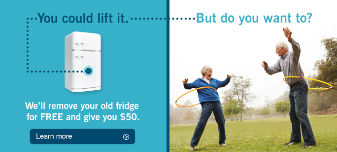 You could lift it. But do you want to. We will remove your old fridge for FREE and give you $50.